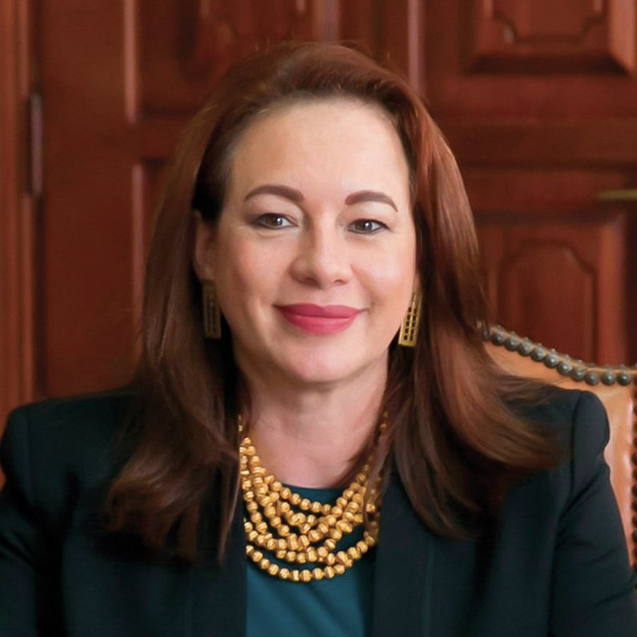 H.E. Maria Fernanda  Espinosa Garces